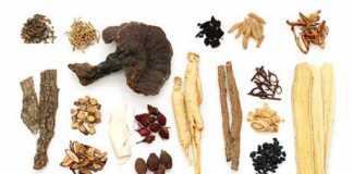hierbas-medicinales-chinas