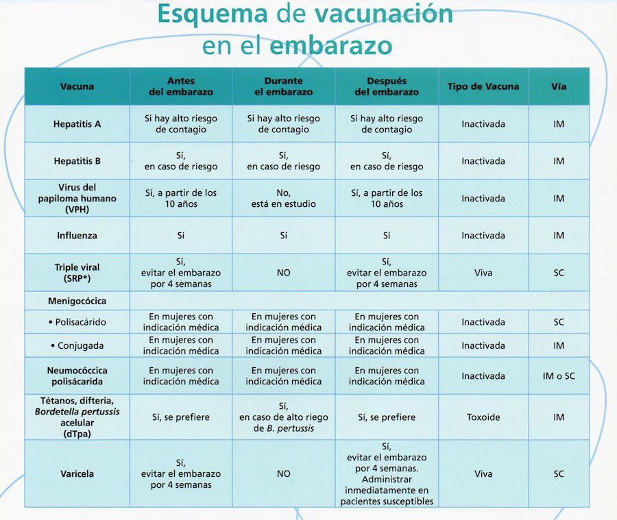 Embarazo-vacunas