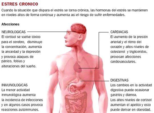 estrescortisol