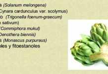 plantas-coleterol