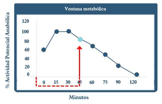 ventana metabolica