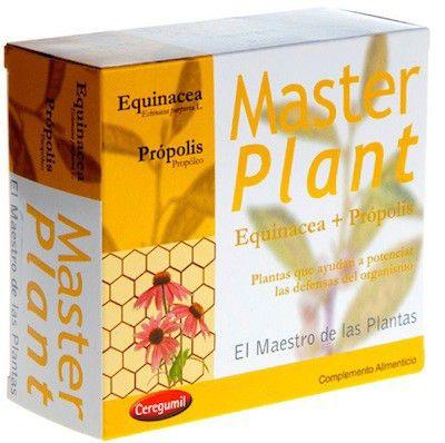master_plant_equinacea.jpg