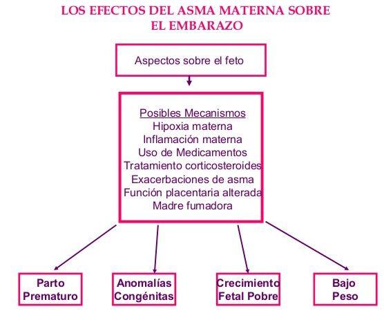 asma materna