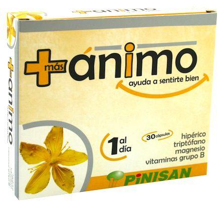 pinisan_mas_animo.jpg