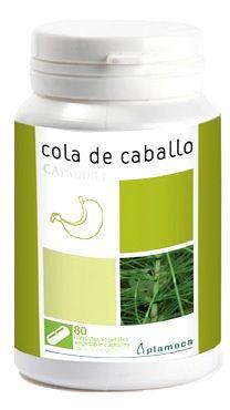 plameca_cola_de_caballo_capsudiet.jpg