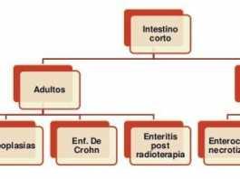 sindrome-de-intestino-corto-7-638