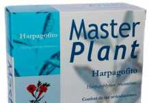 ceregumil_master_plant_harpagofito.jpg