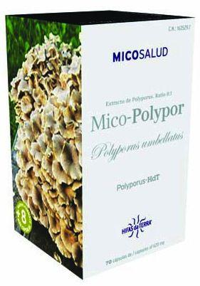 mico_polypor_hifasdaterra.jpg