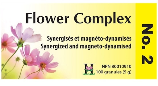 holistica_flower_complex_2.jpg