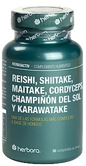reishi-shiitake-maitake-cordyceps-champinon-del-sol-y-karawatake_68319.jpg