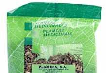 plameca_coclearia.jpg