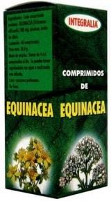 integralia_equinacea.jpg