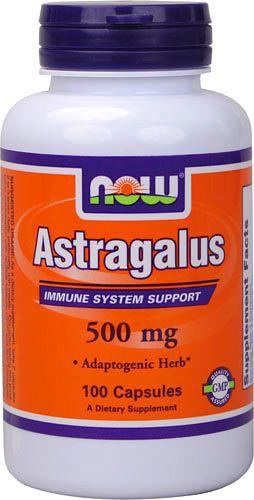 now_astragalus.jpg