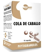 waydiet_cola_de_caballo.jpg
