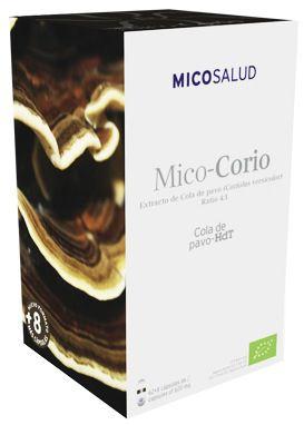 hifas_da_terra_mico_corio.jpg