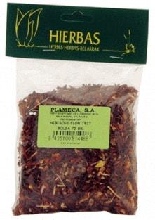 plameca_hibiscus_flor.jpg