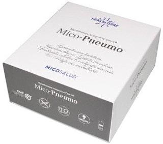 hifas_da_terra_mico_pneumo.jpg