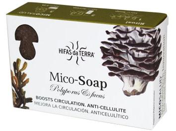 mico_soap_polyporus_fucus.jpg