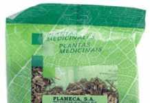 plameca_rompepiedra_coclearia.jpg