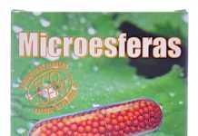 prisma_natural_ginseng_microesferas.jpg