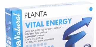 prisma_natural_plantavital_energy_20.jpg