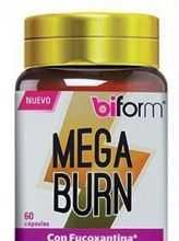biform_mega_burn.jpg