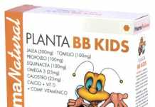 prisma_natural_planta_bb_kids_14.jpg