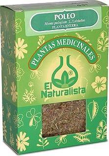 el_naturalista_menta-poleo