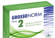 grossonorm_fase_2