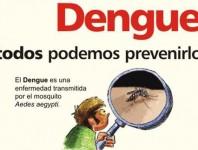 El dengue en la disminución de la salud infantil