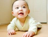 Las células madre podrían servir para tratar el autismo