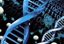 Mapeo-del-genoma-puede-prevenir-las-súper-bacterias