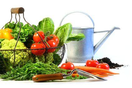 Prevención de enfermedades relacionadas con la nutrición