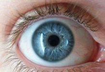 Un-implante-de-retina-podría-ayudar-a-detectar-el-movimiento-en-pacientes-ciegos